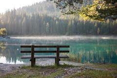 have a seat @ caumasee . switzerland (Toni_V) Tags: autumn mist lake fog reflections bench landscape schweiz switzerland dof suisse bokeh hiking herbst rangefinder mountainlake bergsee flims 111004 randonne graubnden grisons 2011 summiluxm caumasee 35mmf14asph 35lux flimswaldhaus toniv leicam9 lightroom341 l1004643