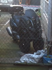 前輪が二つの三輪バイクを見た!
