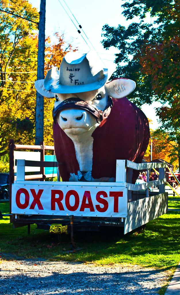 365-120 Burton Ox Roast