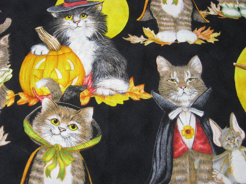 Costumed Kitties