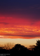 Sky at Sunset (after) (johnrudy3) Tags: trees sunset sky cloud tree nature clouds cloudy redsky sunshower magichour goldenlight firesky