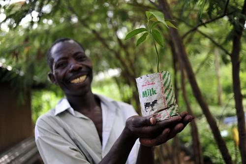 NP climate-smart farm 21