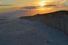 Snow fence (Darren-) Tags: ocean sunset sea ny newyork color beach sand nikon waves dunes westhampton d5100 lonngisland