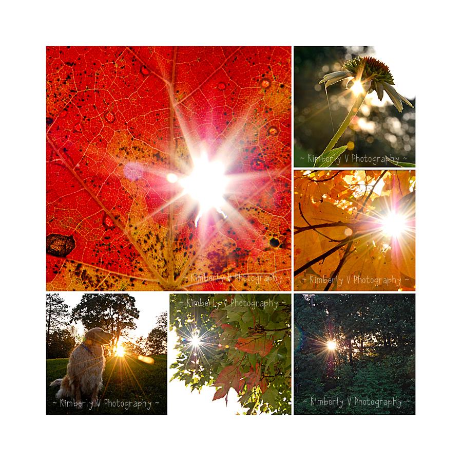 Sunburst collage