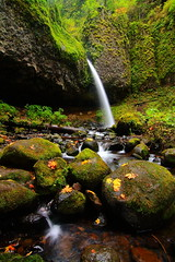 PonyTail (Don Jensen) Tags: autumn horse green fall leaves river wednesday waterfall moss tail columbia falls upper pony gorge ponytail horsetail oregone