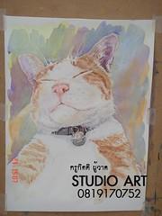 แอบเพ้นท์สีน้ำ ตอนแมวหลับ Watercolor