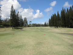 Turtle Bay Colf Course 172