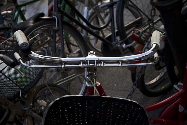 The Bicycles of Ferrara (53)