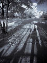 urawa158-IR (yaplan) Tags: sunset nature japan memory infrared 散歩 公園 sonyv1