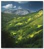 Paisaje Cantabro IV (Agur Al) Tags: sun mountain tree verde green sol nature landscape nikon arboles valle paisaje montaña cantabria mygearandme ringexcellence agural artistoftheyearlevel2