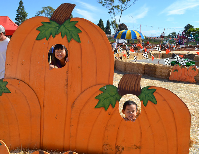 Pumpkin Patch 022