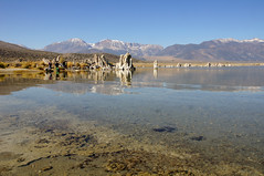 2011-10-15 10-23 Sierra Nevada 382 Mono Lake