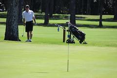 Ball en route...ok, past the hole (bobmendo) Tags: golf sydney nsw monavale svga bayviewgolfclub