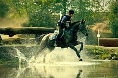 Cross Country and Cross Processing (alex gavinelli) Tags: horses nikon crosscountry piemonte crossprocessing cavalli cic completo gavi cameri d90 ippica equitazione bornago alexgavinelli alexgavi cascinabornago concorsocompleto sportclubbornago