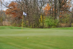 Woodfield Captain's Club 1st Hole (Roni Bear) Tags: trees color nature ball golf nikon michigan fallcolors golfball golfgreen nikond80 golfflag grandblancmichigan puremichigan ronibear woodfieldcaptainsclub