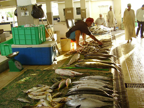 Fish market in Malaysia. Photo by Fred Weirowsky, 2005