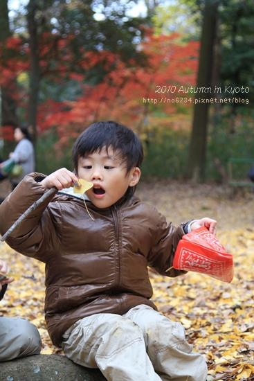 20101207_KyotoWithMoFei_1266 f