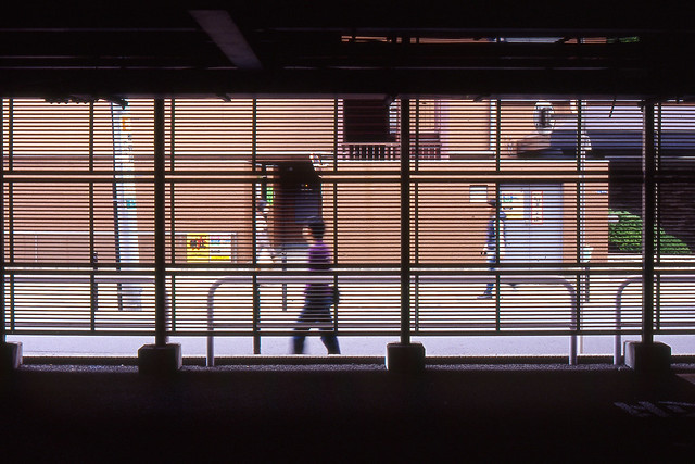 金網越しの歩道