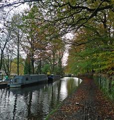 Narrowboat moorings (jrw080578) Tags: autumn trees boats canal saddleworth narrowboats huddersfieldnarrowcanal