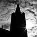 St Patrick's Cathedral_5