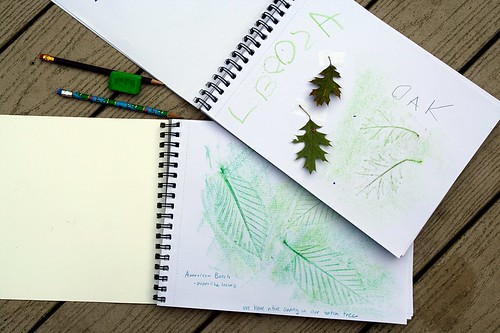 our nature journals