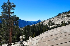Olmstead Point (SandyK29) Tags: travel mountains tree nature rock pine view bluesky yosemite granite halfdome sierras pinetrees olmsteadpoint granitemountain tiogaroad nikond5000