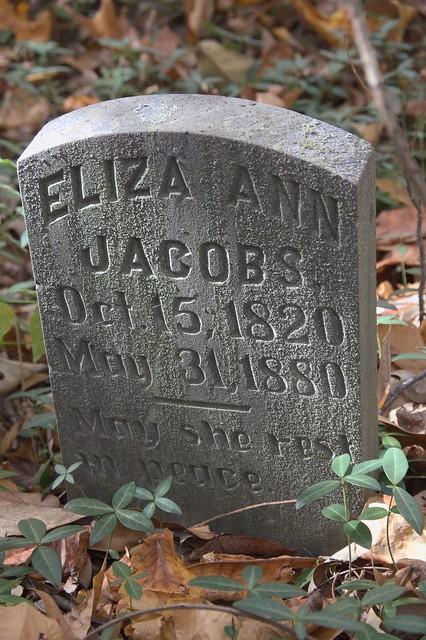 Eliza Ann Jacobs