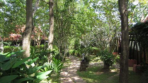 Koh Samui Peace Tropical Spa サムイ島ピーストロピカルスパ (15)