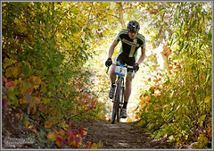 Tunnel Of Power (Photo-John) Tags: autumn color fall bike race cycling cross tunnel cx foliage backlit cannondale velo cyclocross wheelerfarm alexgrant utxc