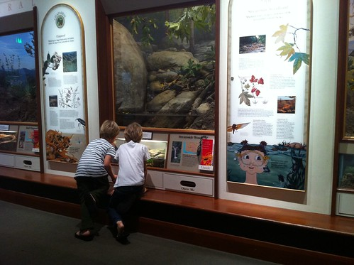 exploring the natural history museum