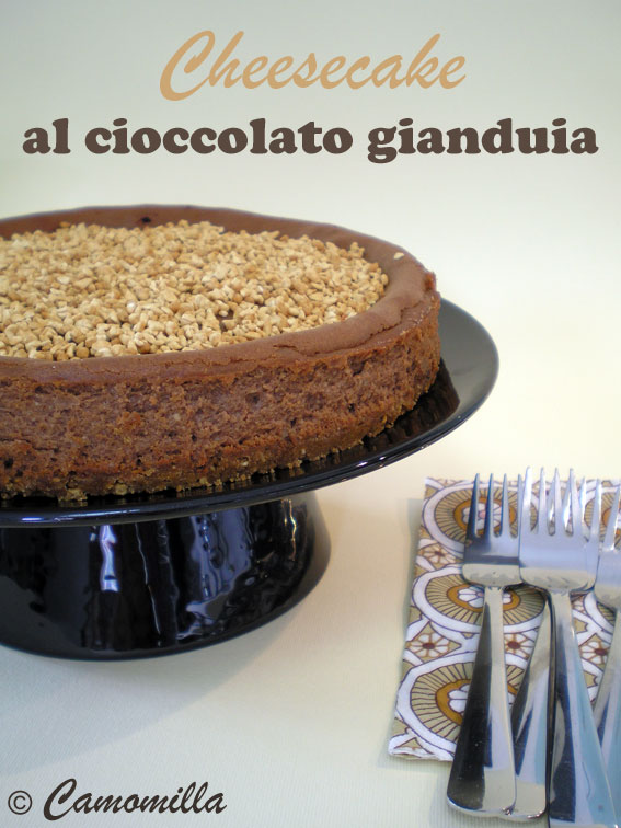 cheesecakegianduia