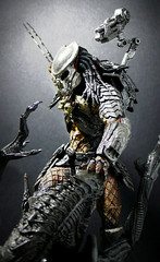 One More Chance... (Jova Cheung) Tags: toys actionfigure battle avp mcfarlane neca xenomorph customfigure yautja celticpredator alienwarrior