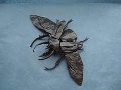 Atlas Beetle New Version Painted (shuki.kato) Tags: bug paper insect flying wings origami awesome beetle caucasus atlas fold cp complex kato shuki chalcosoma