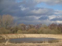 potteric carr (robin denton) Tags: sky landscape pottericcarr doncaster yorkshirewildlifetrust ywt
