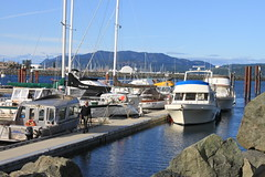 Campbell River Docks