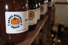 Day 039-1/365 (Taryn Wattles Photography) Tags: apple pumpkin honey 365 patch day39pumpkin
