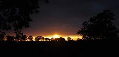 08-Oct-11 Aveyron sunset (Trecpeter) Tags: horses france cheval welsh cob foal aveyron hho d5000