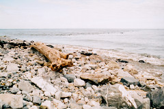 Pebble Beach (Saturated Imagery) Tags: sea film landscape prestatyn fujicolorc200 prakticatl5b