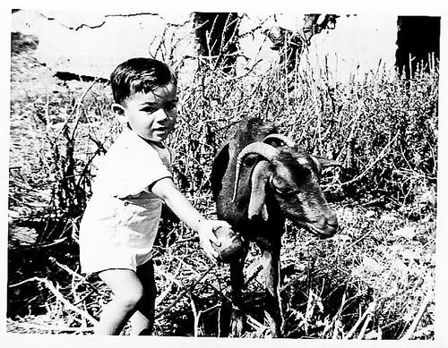 Javier Aranda dando de comer a una cabra