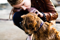 (danielle kiemel) Tags: portrait cute love dogs girl animals female nikon rocks photographer young australia nsw centralcoast terrigal thehaven daniellekiemel