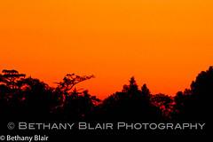 FridayLPGA--Imported--10-21-11--7162-Edit.jpg (Bethany Blair Photography) Tags: sunset sundown florida fl lpga