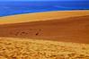 Chapter 7 - Corralejo, the unbereable lightness of the desert (#2): Harmonies (stedef) Tags: sea spain mare desert fuerteventura canaryislands spagna deserto corralejo canarie olétusfotos mygearandme playasgrandes