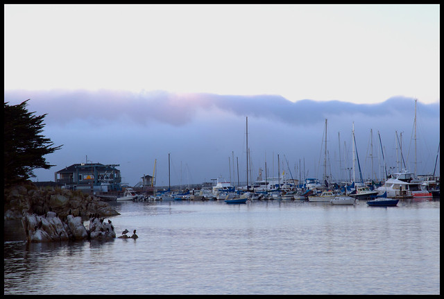 fog rolling in over Monterey