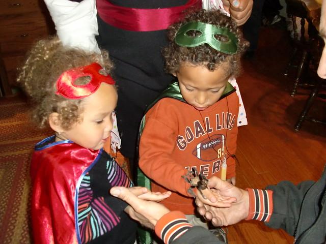 David Holding Teresa (a yooge spider)
