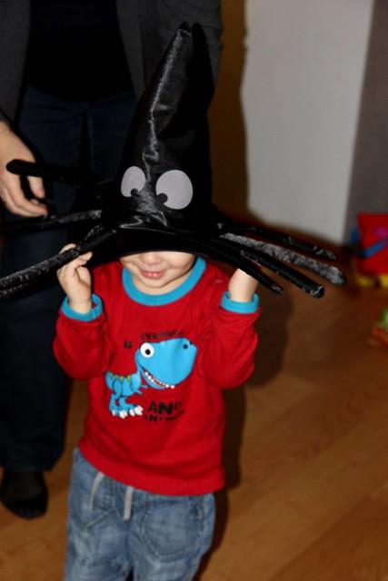 Lassi, spider-lover