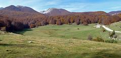 Escursionismo PNA - Monte Meta