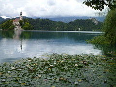 Bled (Mauro Quilombola) Tags: slovenia lagodebled padremauroluizdasilva mauroluizdasilva