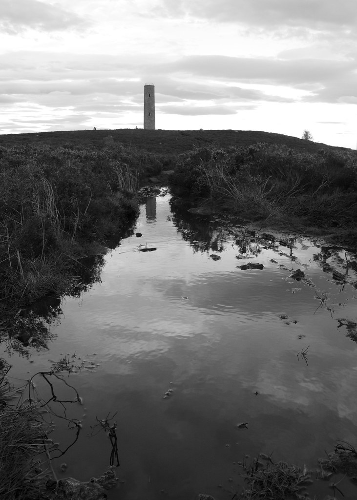 Scolty tower reflected