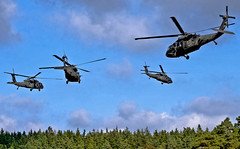 Air support (The U.S. Army) Tags: apache military helicopter blackhawk chinook multinational usarmyeurope bumgardner combataviationbrigade 173rdairbornebrigadecombatteam 12thcab fste fullspectrumtrainingevent