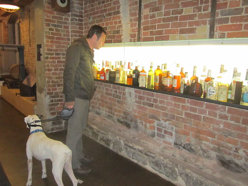 Looking at old historical alcohol bottles in building 58 in the distillery district in Toronto